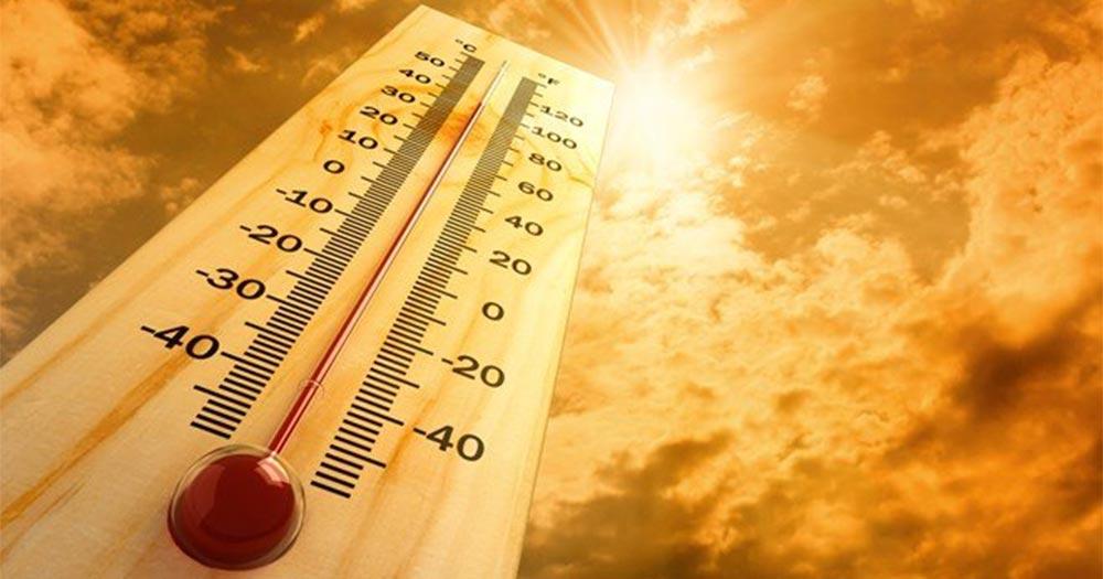 Ảnh hưởng của nhiệt độ đến cây trồng